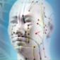 acupuncture_sq